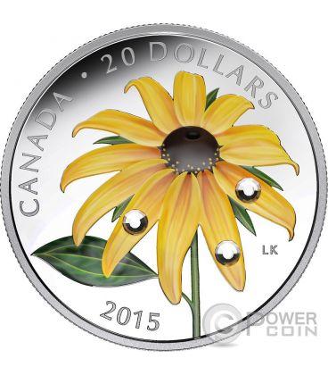 BLACK EYED SUSAN Dew Drops Swarovski Crystal Silver Coin 20$ Canada 2015