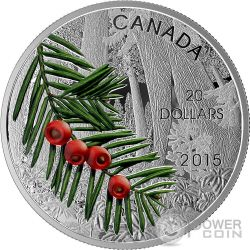COLUMBIAN YEW TREE Forest Of Canada Moneta Argento 20$ Canada 2015