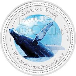 HUMPBACK WHALE Balena Megattera Moneta Argento 2$ Pitcairn Islands 2009