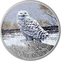 SNOWY OWL Bubo Scandiacus Silver Coin 20$ Canada 2016