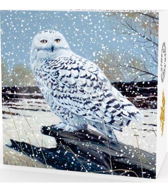 SNOWY OWL Civetta Delle Nevi Moneta Argento 20$ Canada 2016