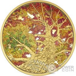 KALEIDOSCOPE OF COLOUR Maple Canopy Gold Coin 250$ Canada 2015