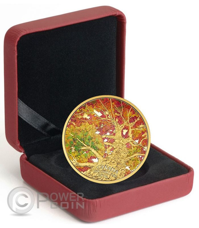 kaleidoscope of colour maple canopy gold coin 250 canada 2016