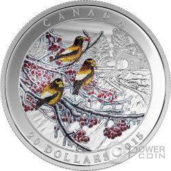 WEATHER PHENOMENON WINTER FREEZE Silver Coin 20$ Canada 2015