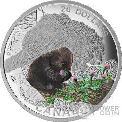 PORCUPINE Porcospino Baby Animals Moneta Argento 20$ Canada 2015