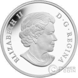 PORCUPINE Baby Animals Proof Moneda Plata 20$ Canada 2015