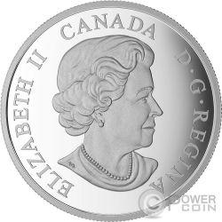 WHITE TAILED DEER Cervo Baby Animals Moneta Argento 20$ Canada 2015