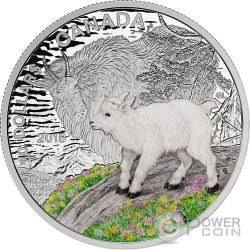 MOUNTAIN GOAT Capra Baby Animals Moneta Argento 20$ Canada 2015