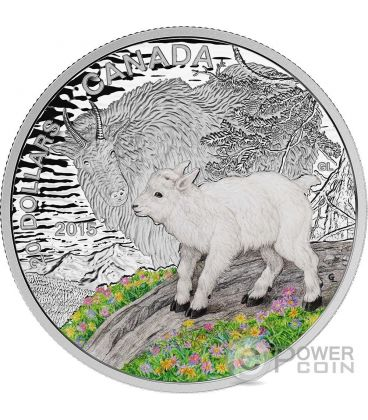 MOUNTAIN GOAT Baby Animals Proof Silver Coin 20$ Canada 2015