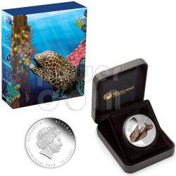 MORAY EEL Australian Sea Life Moneda Plata 50c Australia 2010