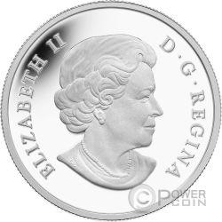 RACCOON Baby Animals Silver Coin 20$ Canada 2016