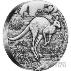 AUSTRALIAN KANGAROO Canguro Australiano 2 Oz Moneta Argento 2$ Australia 2016