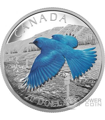 MOUNTAIN BLUEBIRD The Migratory Birds Convention 100 Years of Protection Silver Coin 20$ Canada 2016