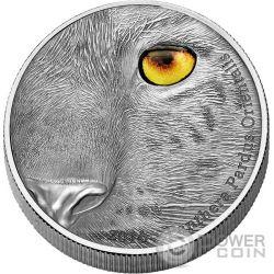 AMUR LEOPARD Panthera Pardus Orientalis Natures Eyes 1Kg Kilo Moneda Plata 10000 Francs Congo 2016