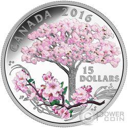 CHERRY BLOSSOMS Fiori di Ciliegio Moneta Argento 15$ Canada 2016
