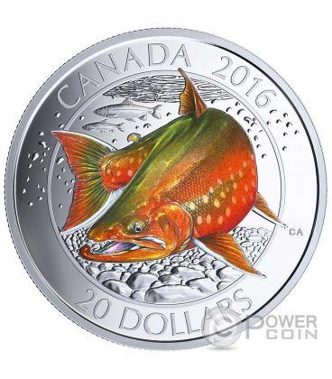 ARCTIC CHAR Salmerino Alpino Pesce Canadian Salmonids 1 Oz Moneta Argento 20$ Canada 2016
