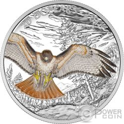 REGAL RED TAILED HAWK Majestic Animal Poiana della Giamaica Moneta Argento 20$ Canada 2016