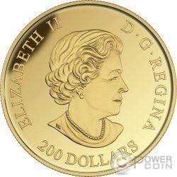 BLUENOSE Tall Ships Legacy Moneda Oro 200$ Canada 2016