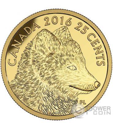 TRADITIONAL ARCTIC FOX Volpe Artica Predator vs Prey Moneta Oro 25 Centesimi Canada 2016