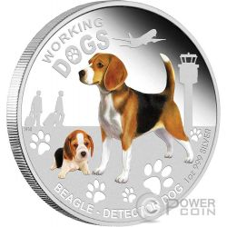 BEAGLE Detector Working Dogs Silver Coin 1$ Tuvalu 2011
