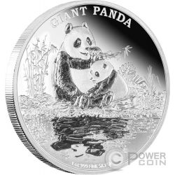 GIANT PANDA Panda Gigante Endangered Species 1 Oz Moneta Argento 2$ Niue 2016