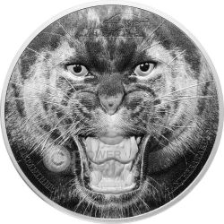 BLACK PANTHER Rare Wildlife 2 Oz Silber Münze 1500 Shillings Tanzania 2016