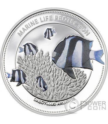 WHITETAIL DAMSELFISH Protezione Vita Marina Moneta 1$ Palau 2015