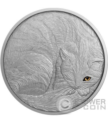 CAT Artistic Real Eye Effect 2 Oz Silver Coin 10$ Niue 2016