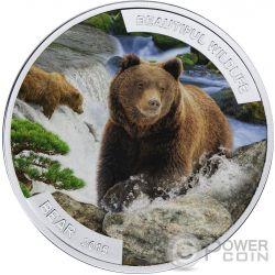 BEAR ORSO Beautiful Wildlife Fauna Selvatica 1 Oz  Moneta Argento 1$ Niue 2015