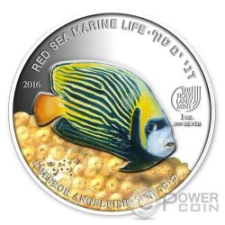 EMPEROR ANGELFISH Red Sea Marine Life 1 Oz Silver Coin 5$ Palau 2016