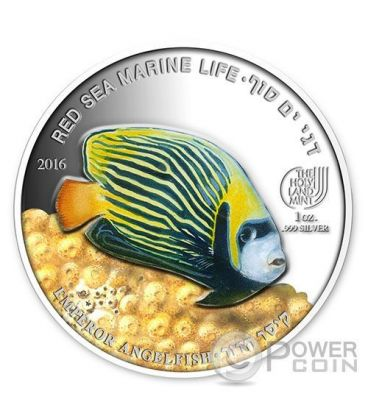 EMPEROR ANGELFISH Pesce Angelo Red Sea Marine Life  1 Oz Moneta Argento 5$ Palau 2016