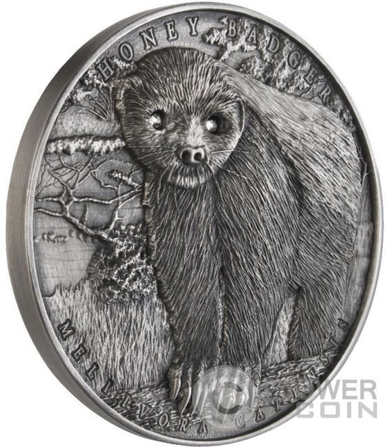 HONEY BADGER Mellivora Capensis Brave Animals 2 Oz Silber Münze 2$ Niue 2015