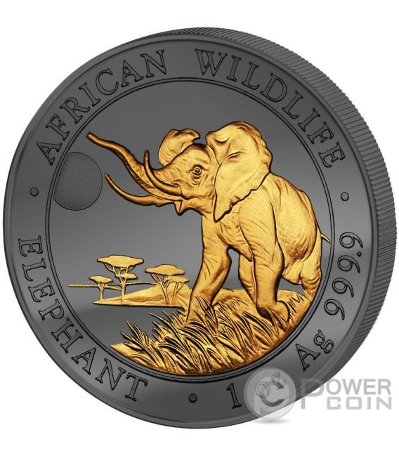 GOLDEN ENIGMA Elephant African Wildlife 1 Oz Silber Münze 100 Shillings Somalia 2016