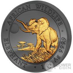 GOLDEN ENIGMA Elefante Elephant African Wildlife 1 Oz Moneta Argento 100 Shillings Somalia 2016