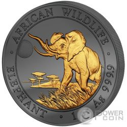 GOLDEN ENIGMA Elephant African Wildlife 1 Oz Moneda Plata 100 Shillings Somalia 2016