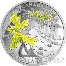 BIGLEAF MAPLE Jewel Of The Rain Swarovski Silver Coin 20$ Canada 2016