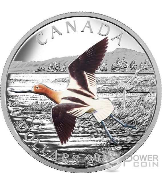 AMERICAN AVOCET The Migratory Birds Convention 100 Years of Protection Silver Coin 20$ Canada 2016