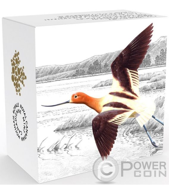 AMERICAN AVOCET The Migratory Birds Convention 100 Years of Protection Серебро Монета 20$ Канада 2016