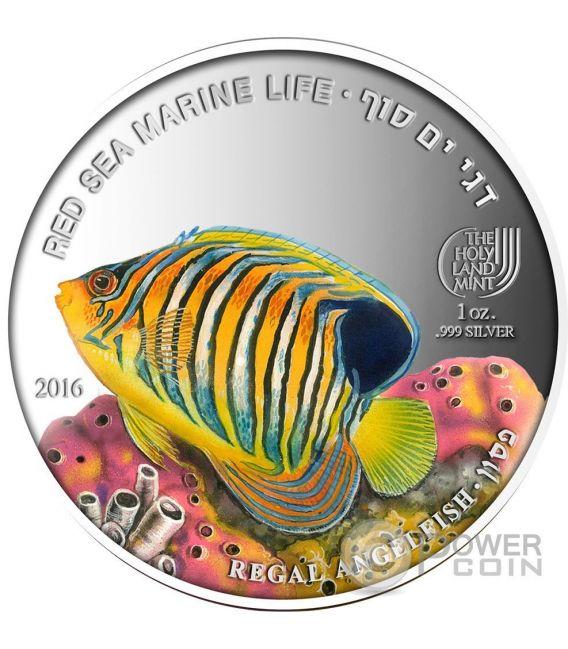 REGAL ANGELFISH Pesce Angelo Reale Red Sea Marine Life 1 Oz Moneta Argento 5$ Palau 2016