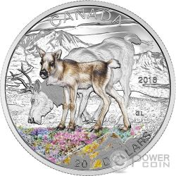 CARIBOU Baby Animals Silber Münze 20$ Canada 2016
