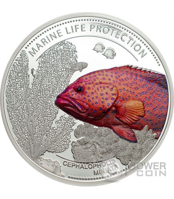 CORAL HIND Marine Life Protection Silber Münze 5$ Palau 2016