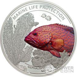 CORAL HIND Cernia Dei Coralli Marine Life Protection Moneta Argento 5$ Palau 2016