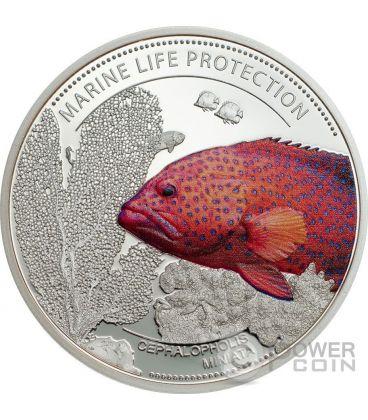 CORAL HIND Cernia Dei Coralli Marine Life Protection Moneta Rame 1$ Palau 2016