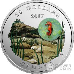 SEAHORSE Under The Sea Moneda Plata 20$ Canada 2017
