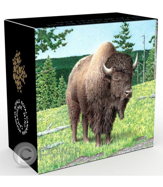 BENEVOLENT BISON Bisonte Majestic Animal Moneta Argento 20$ Canada 2016