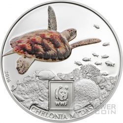 GREEN SEA TURTLE WWF World Wildlife Fund Münze 100 Shillings Tanzania 2016
