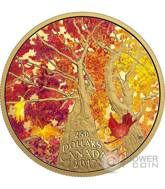 KALEIDOSCOPE OF COLOUR Maple Canopy Moneta 2 Oz Oro 250$ Canada 2017