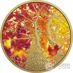 KALEIDOSCOPE OF COLOUR Maple Canopy Moneta 2 Oz Oro 250$ Canada 2017