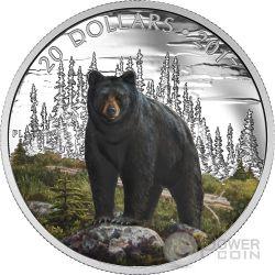 BOLD BLACK BEAR Majestic Animal Silver Coin 20$ Canada 2017