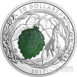 BRILLIANT BIRCH LEAVES Drusy Stone Silver Coin 20$ Canada 2017